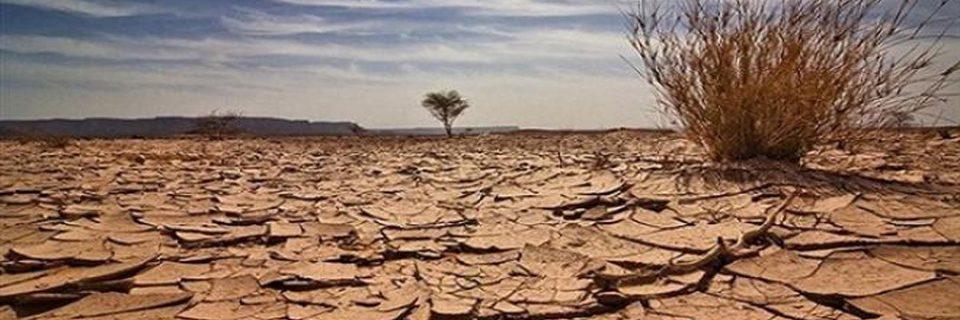 Together We Spend Desertification